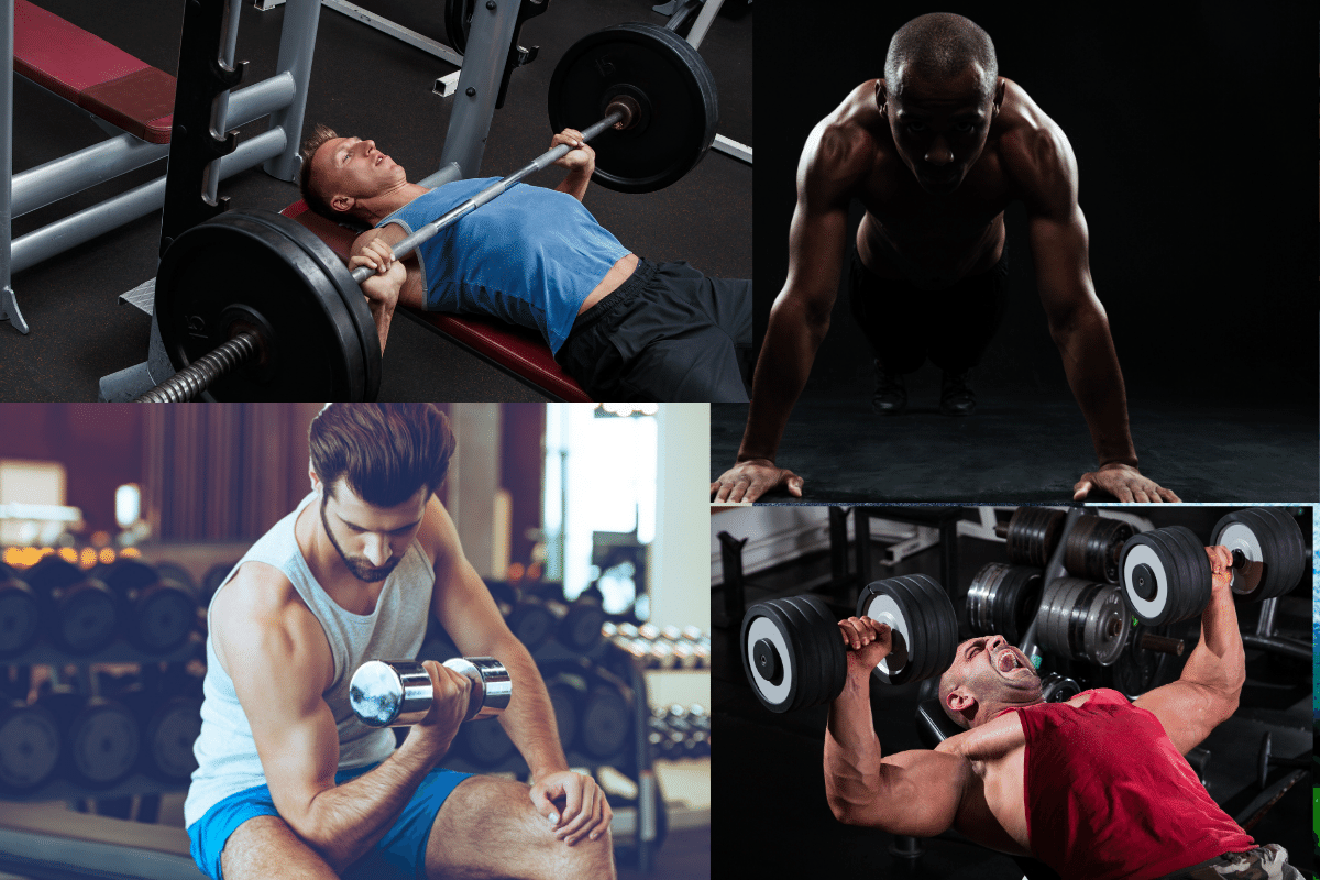 how to build arm muscles