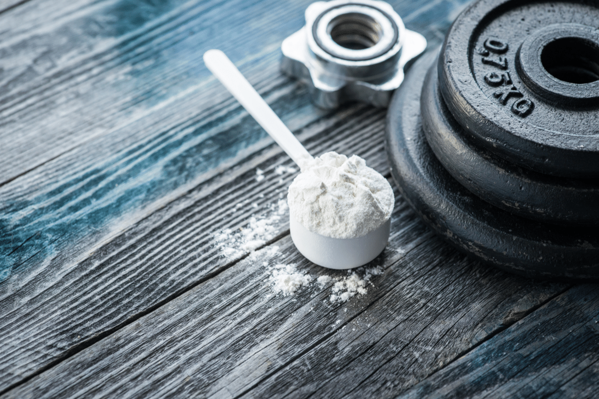 how much protein per day build muscle