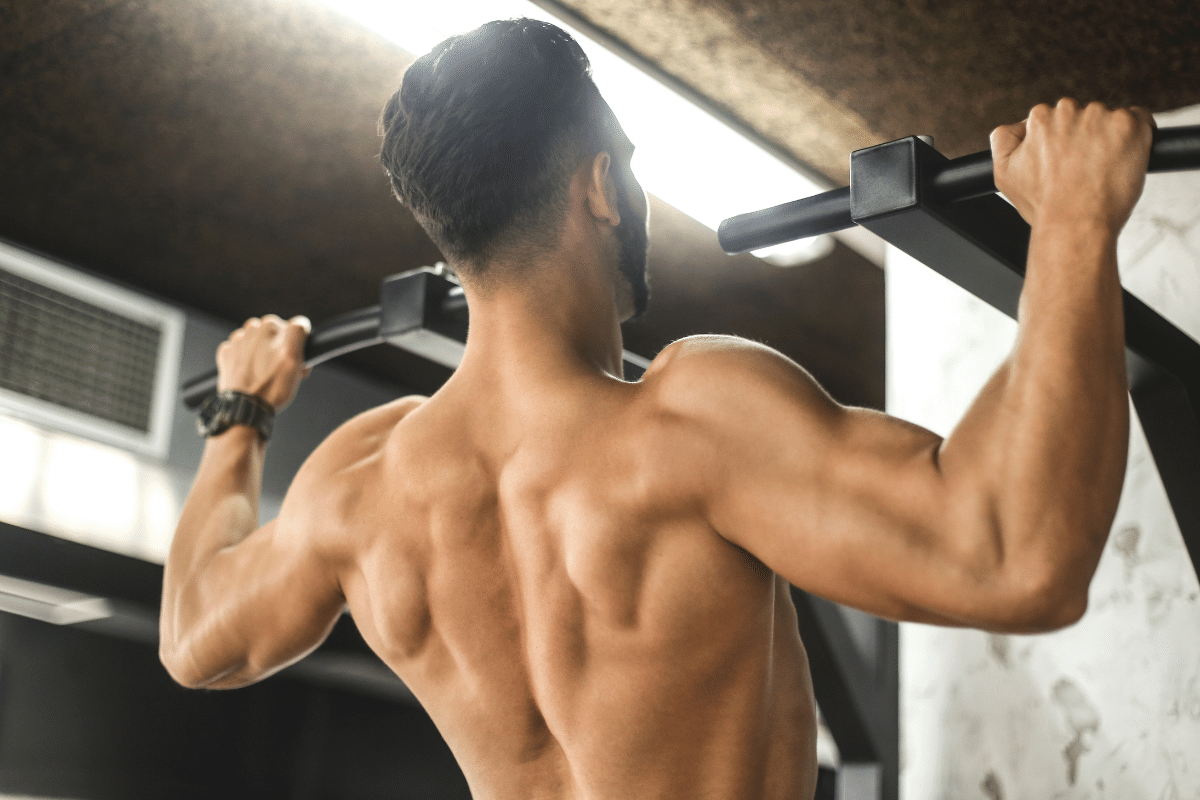 best back workout at home